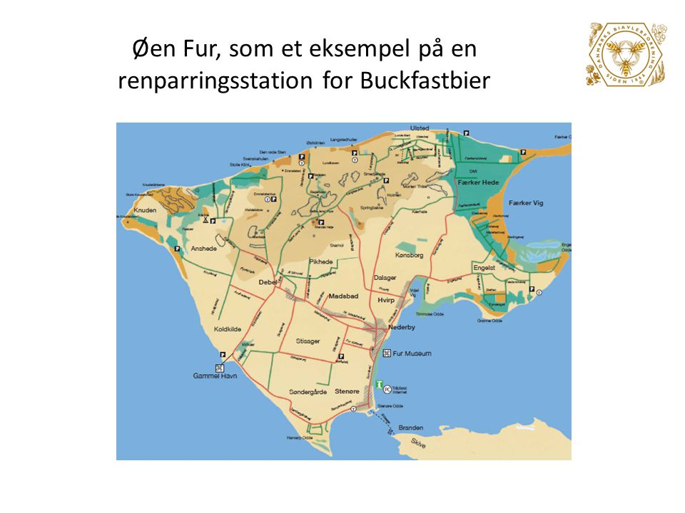 Øen Fur, som et eksempel på en renparringsstation for Buckfastbier
