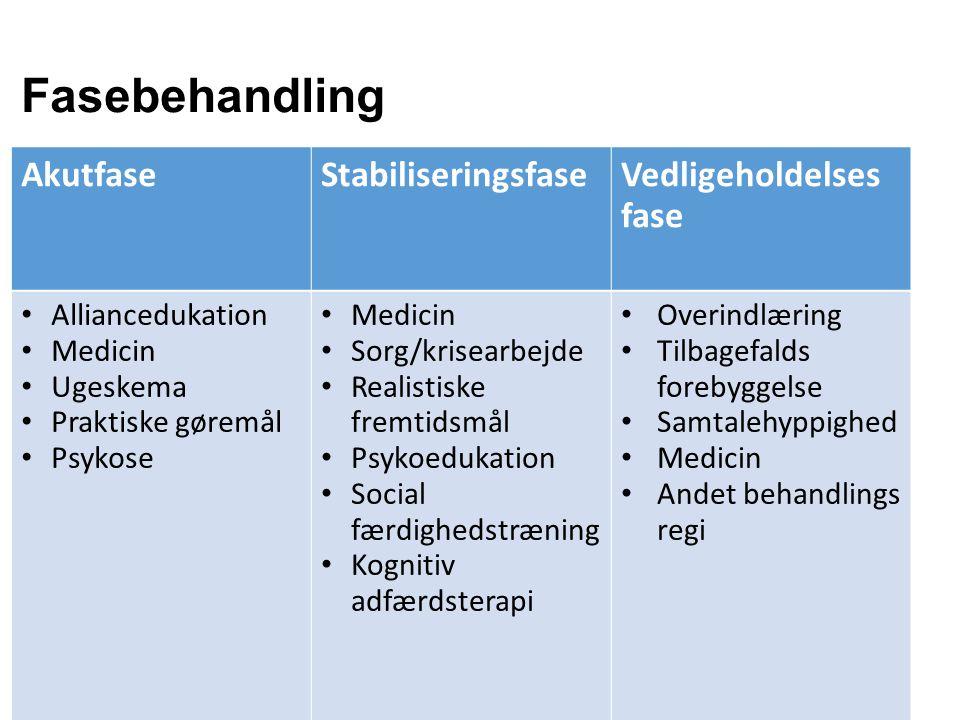 Fasebehandling Akutfase Stabiliseringsfase Vedligeholdelses fase
