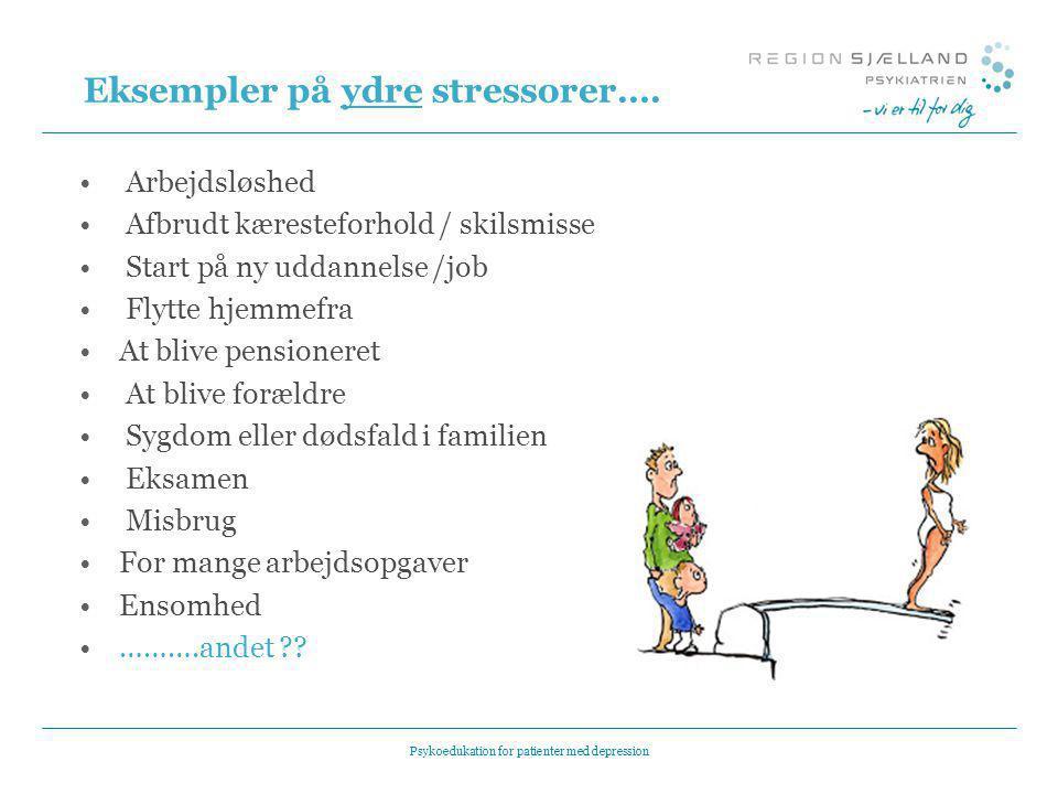 Eksempler på ydre stressorer….