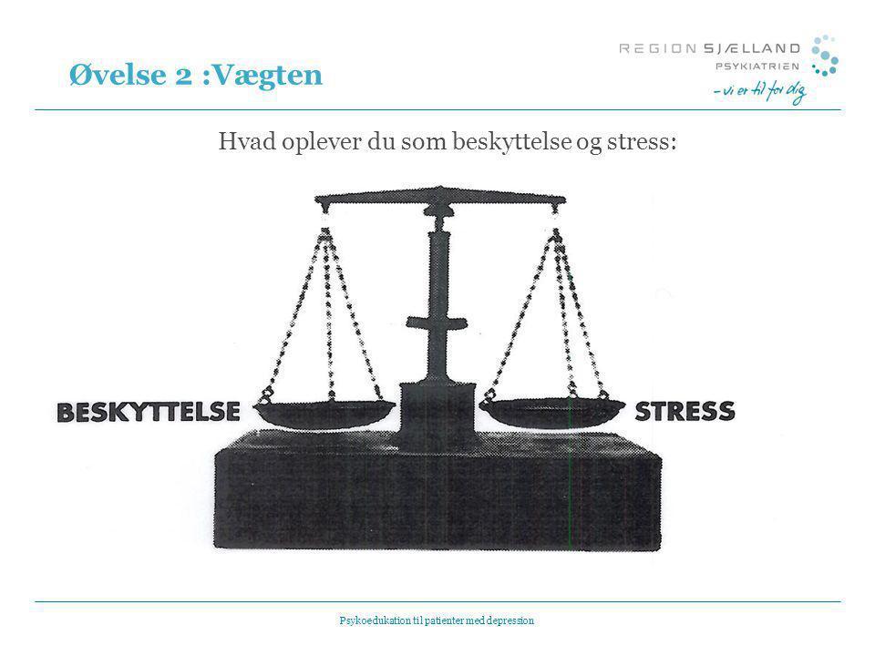 Øvelse 2 :Vægten Hvad oplever du som beskyttelse og stress: