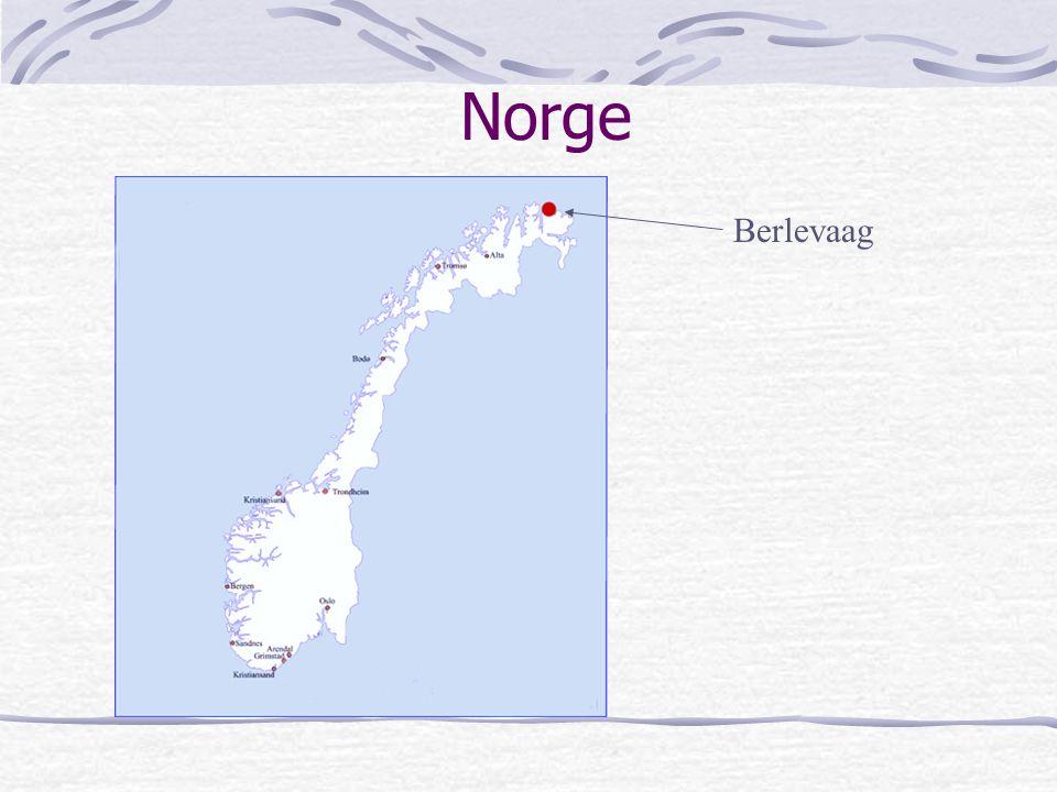 Norge Berlevaag