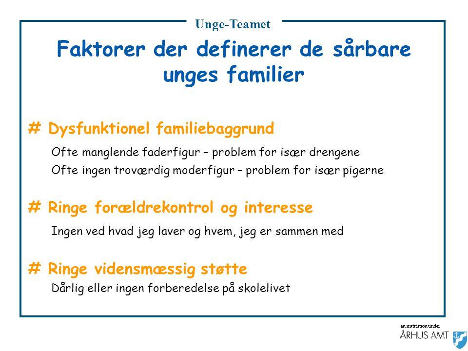 Faktorer der definerer de sårbare unges familier