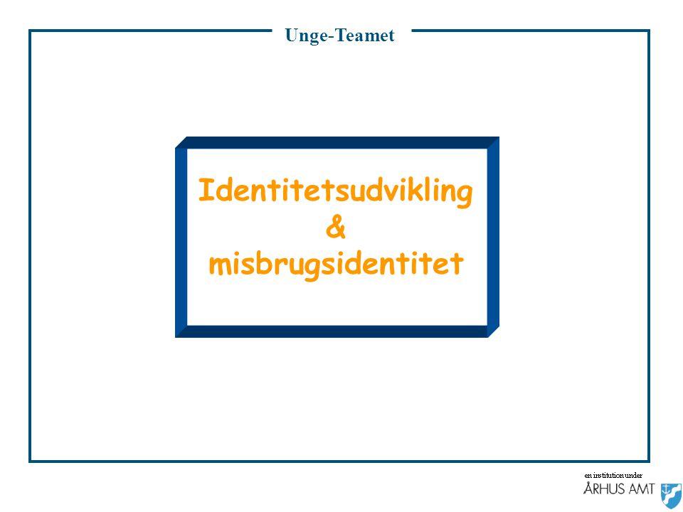Identitetsudvikling & misbrugsidentitet
