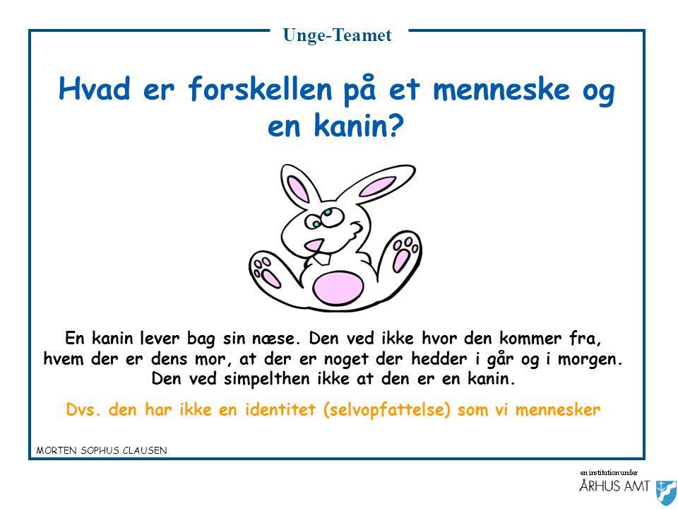 Hvad er forskellen på et menneske og en kanin