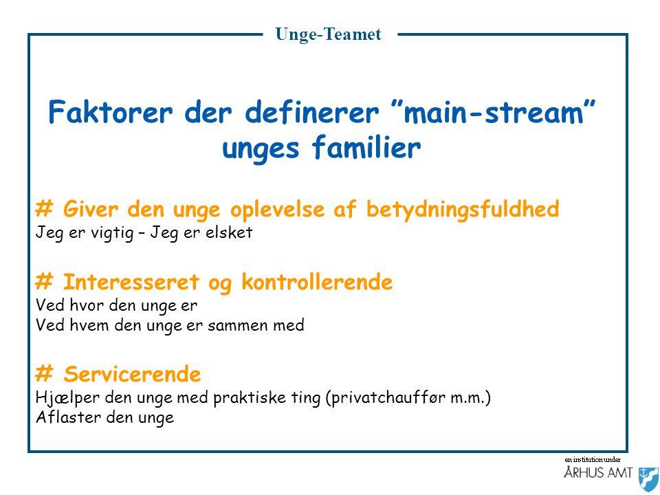 Faktorer der definerer main-stream unges familier