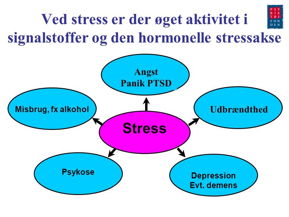 Ved stress er der øget aktivitet i signalstoffer og den hormonelle stressakse