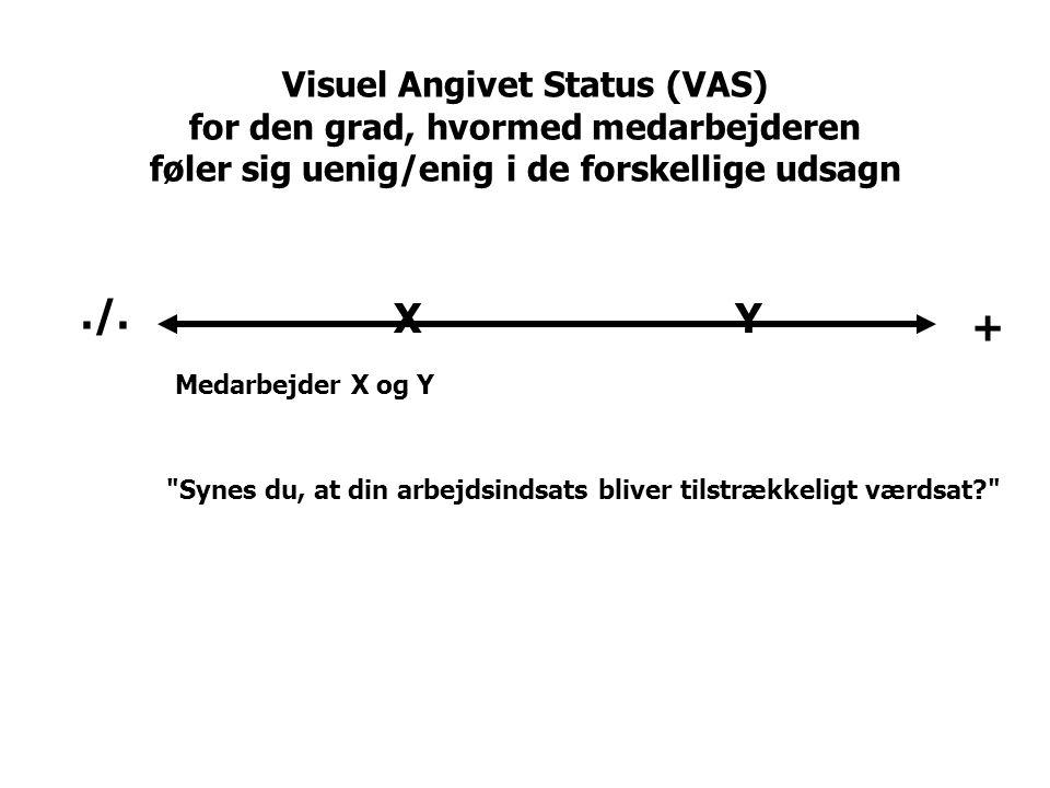 Visuel Angivet Status (VAS) for den grad, hvormed medarbejderen føler sig uenig/enig i de forskellige udsagn