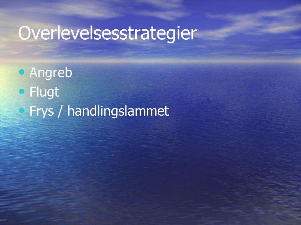 Overlevelsesstrategier