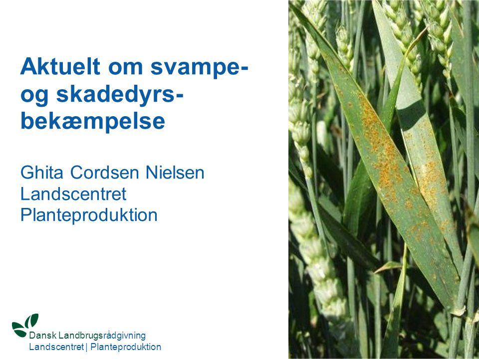 Aktuelt om svampe- og skadedyrs-bekæmpelse Ghita Cordsen Nielsen Landscentret Planteproduktion