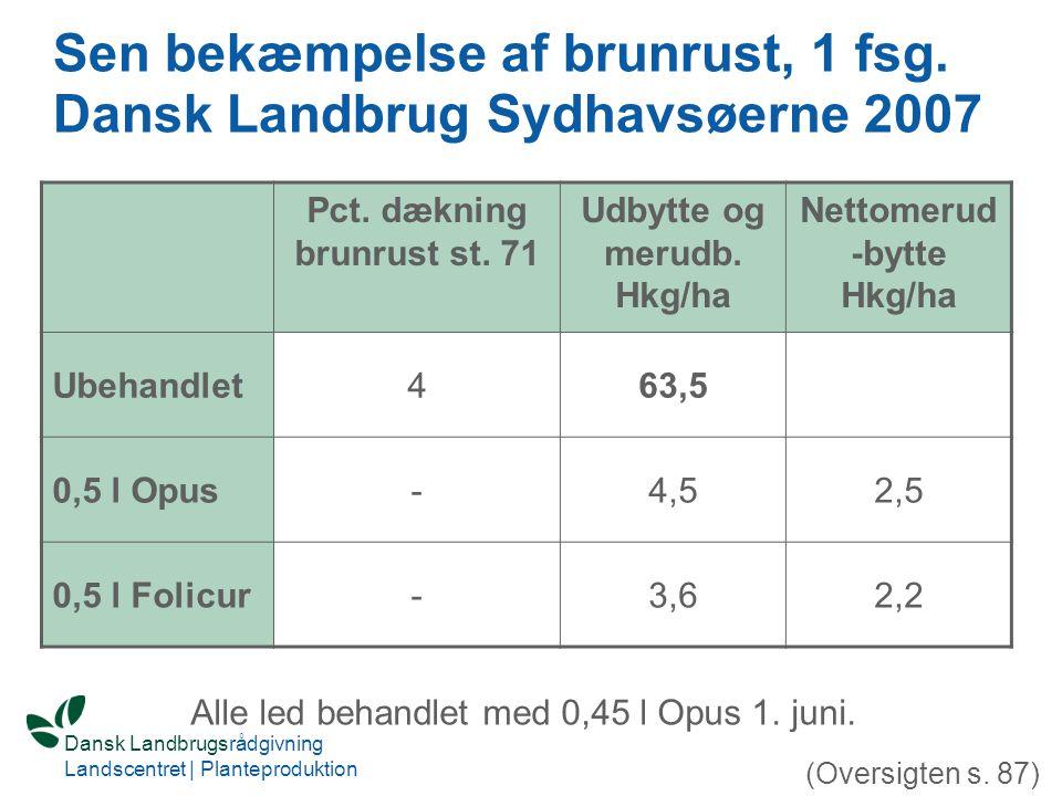 Sen bekæmpelse af brunrust, 1 fsg. Dansk Landbrug Sydhavsøerne 2007