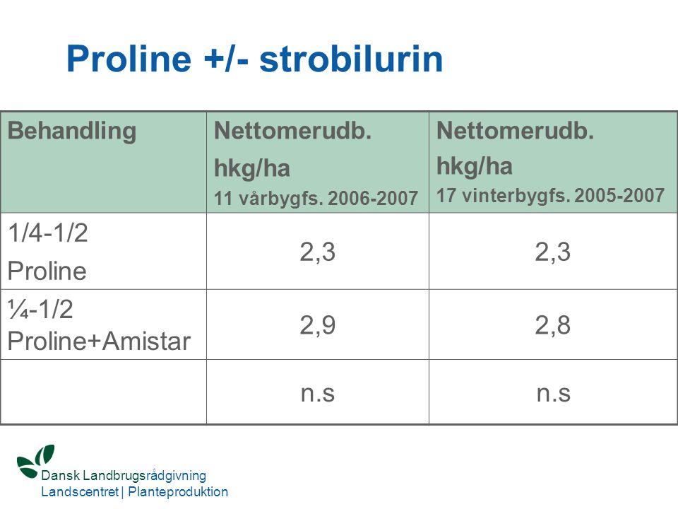 Proline +/- strobilurin