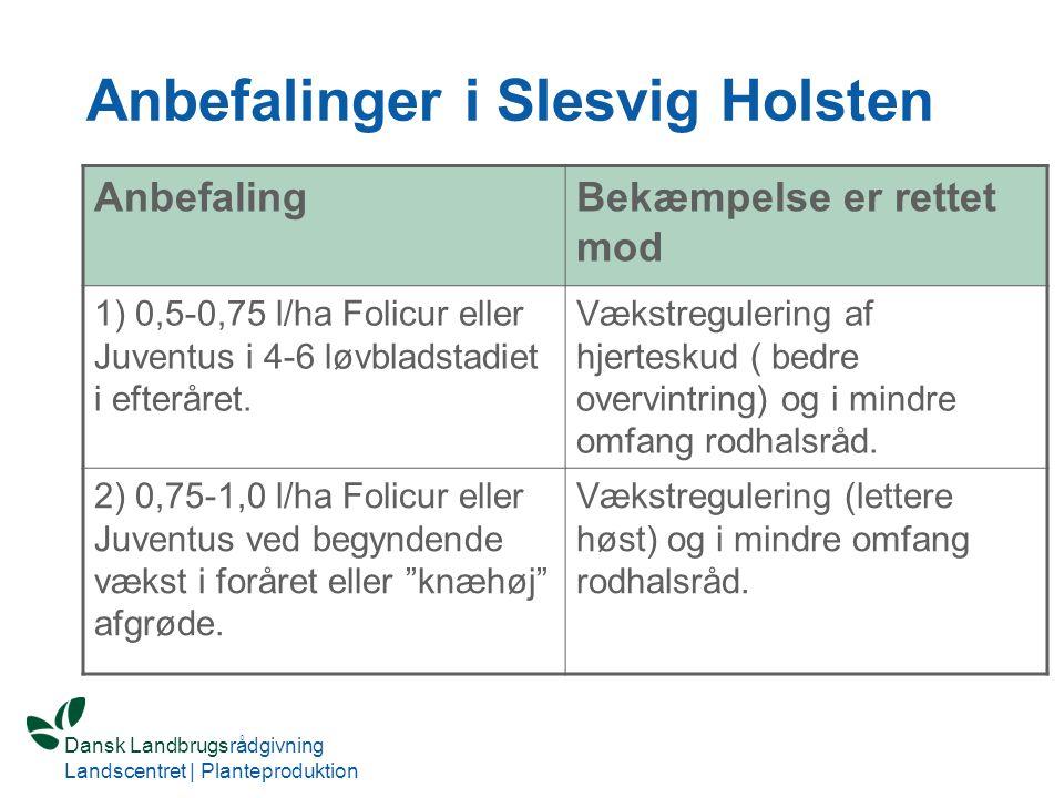 Anbefalinger i Slesvig Holsten