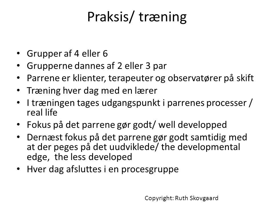 Praksis/ træning Grupper af 4 eller 6
