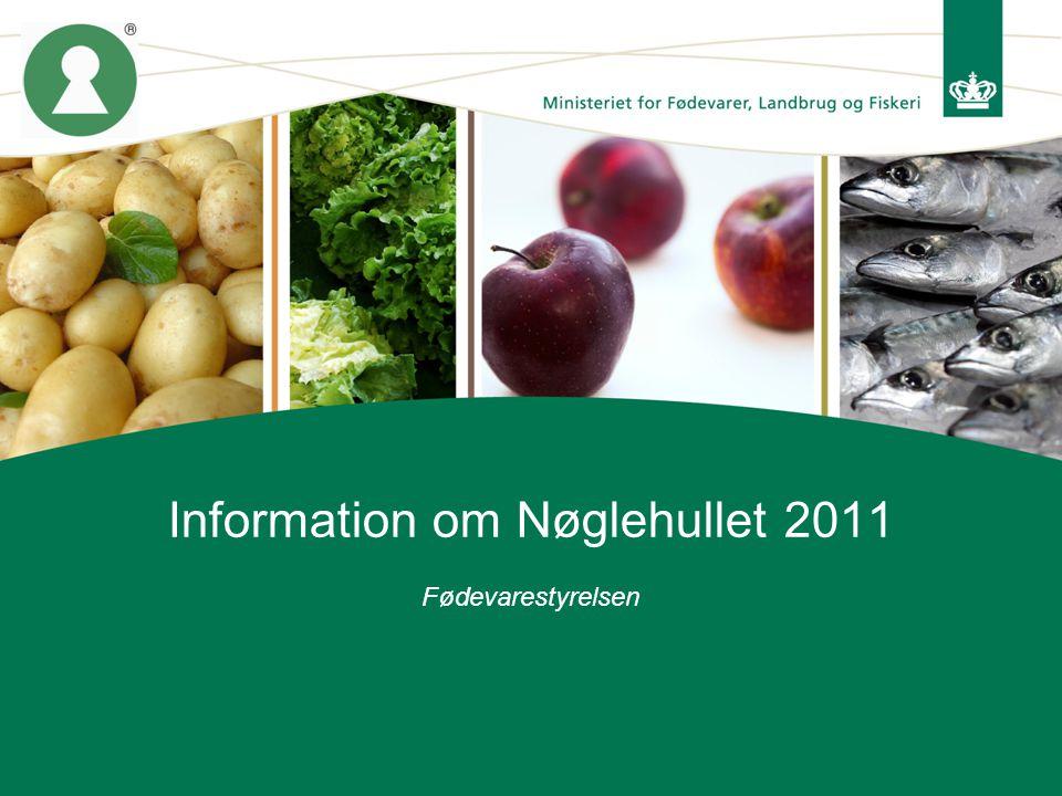 Information om Nøglehullet 2011