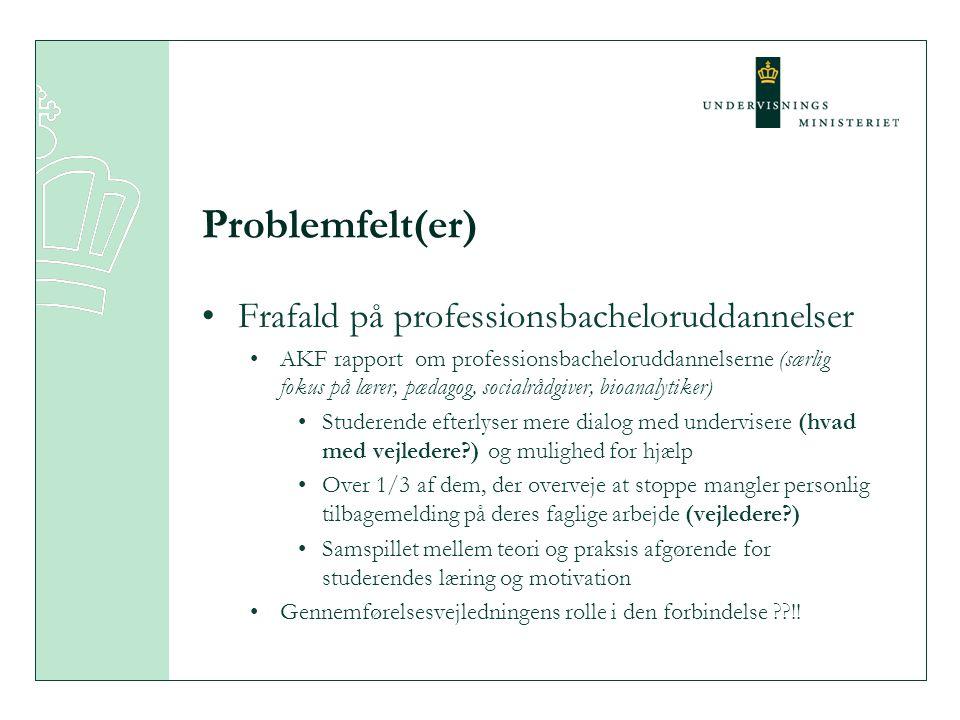 Problemfelt(er) Frafald på professionsbacheloruddannelser