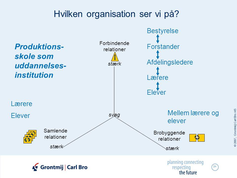 Hvilken organisation ser vi på