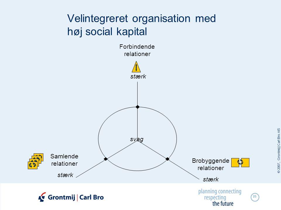 Velintegreret organisation med høj social kapital