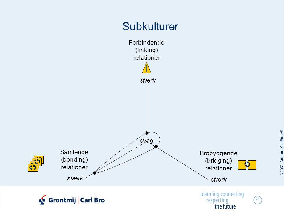 Subkulturer Forbindende (linking) relationer stærk svag