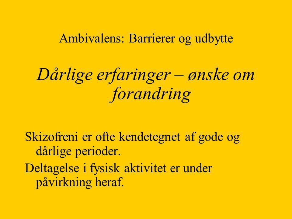 Ambivalens: Barrierer og udbytte