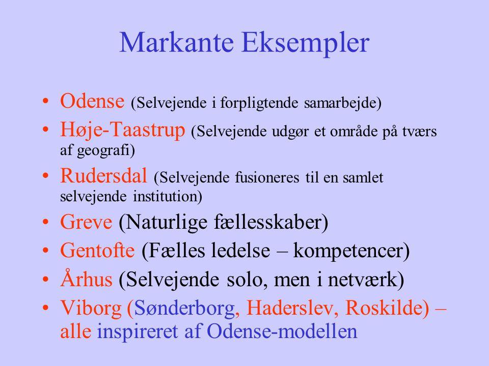 Markante Eksempler Odense (Selvejende i forpligtende samarbejde)