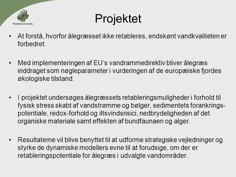 Projektet At forstå, hvorfor ålegræsset ikke retableres, endskønt vandkvaliteten er forbedret.