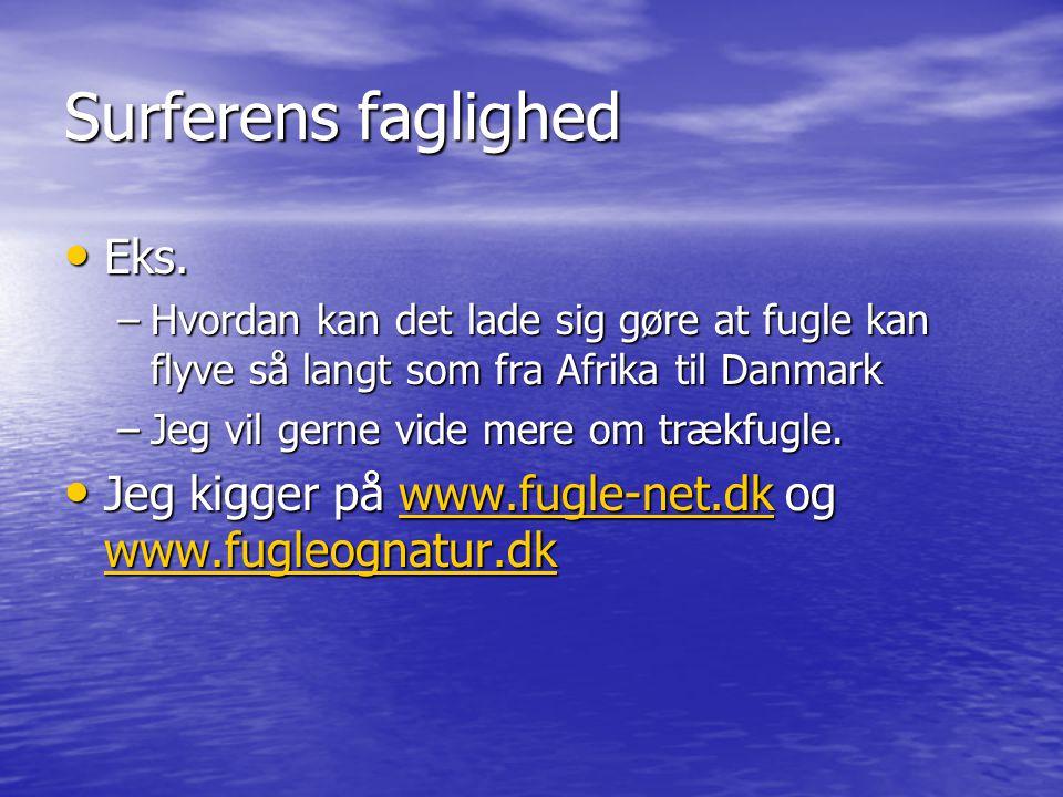 Surferens faglighed Eks.