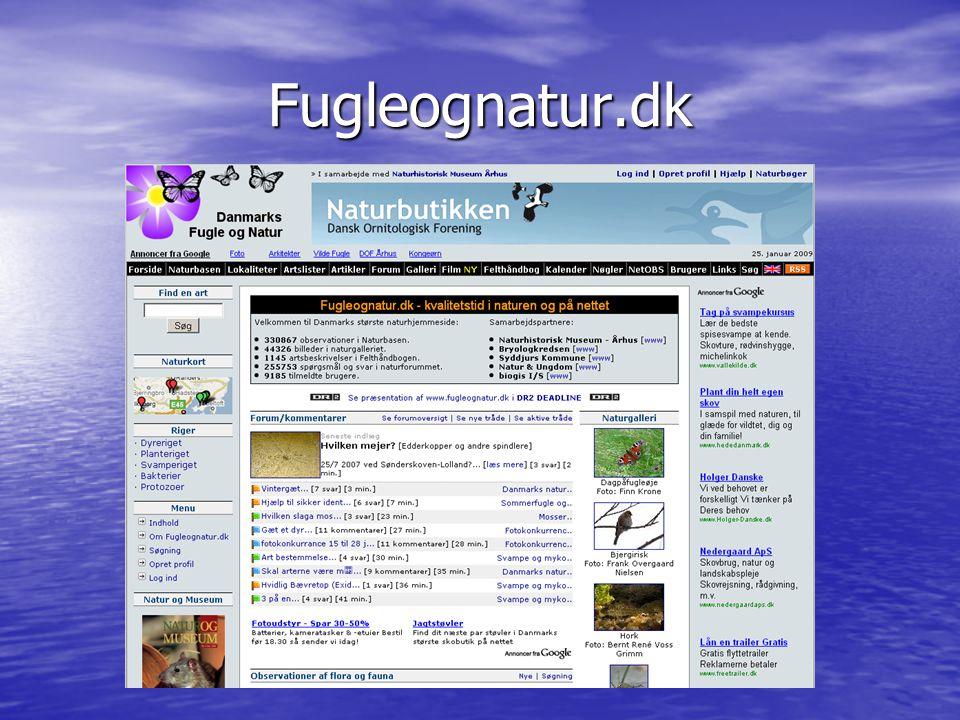 Fugleognatur.dk