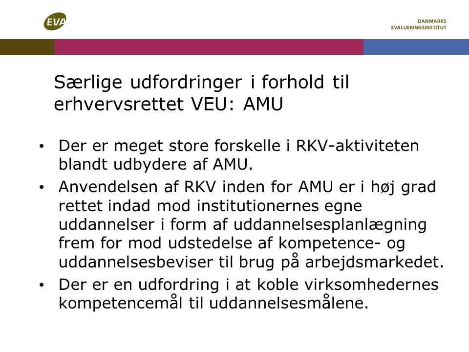 Særlige udfordringer i forhold til erhvervsrettet VEU: AMU