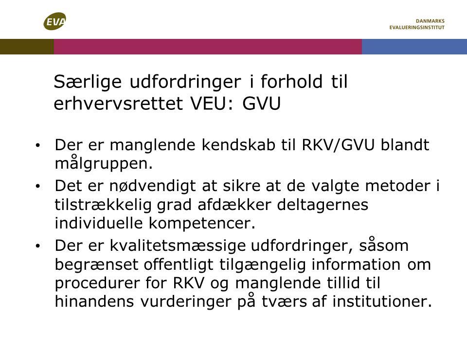 Særlige udfordringer i forhold til erhvervsrettet VEU: GVU