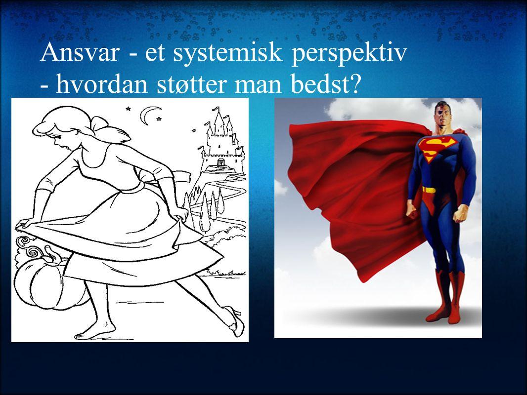 Ansvar - et systemisk perspektiv - hvordan støtter man bedst