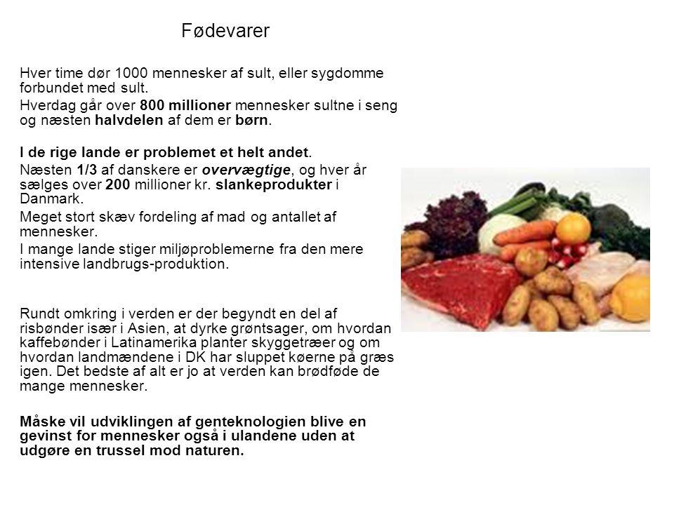 Fødevarer Hver time dør 1000 mennesker af sult, eller sygdomme forbundet med sult.
