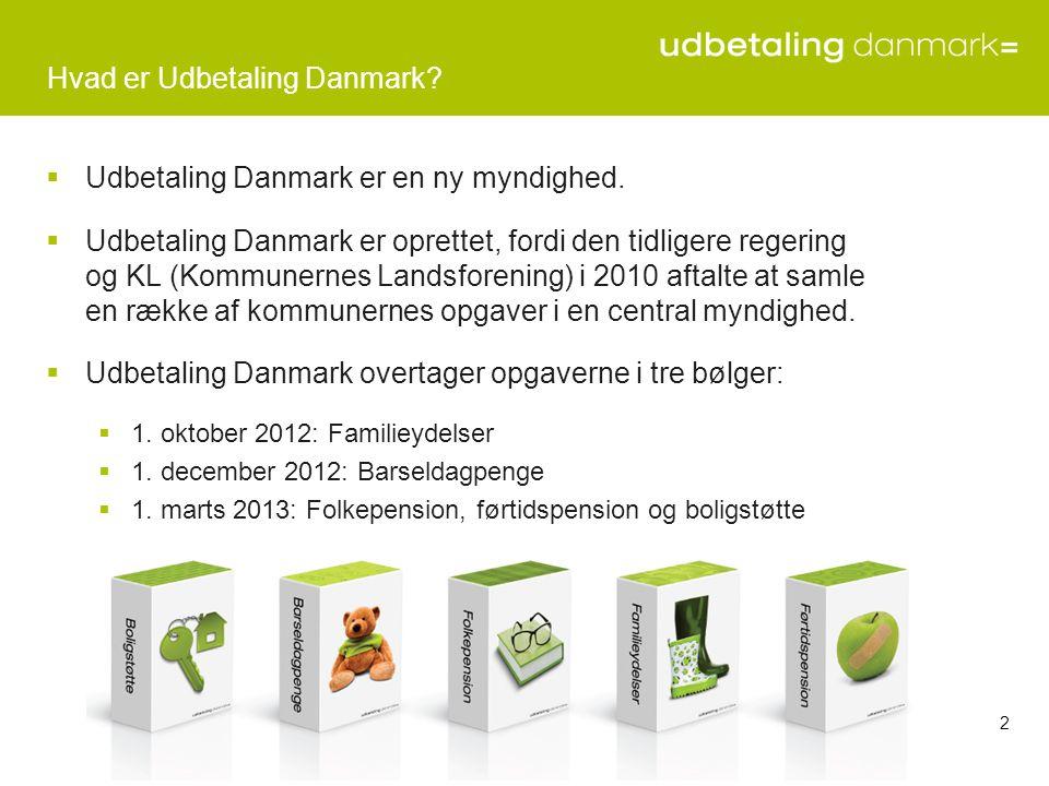 Hvad er Udbetaling Danmark