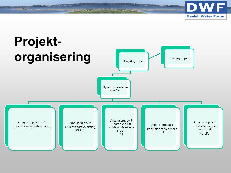 Projekt-organisering