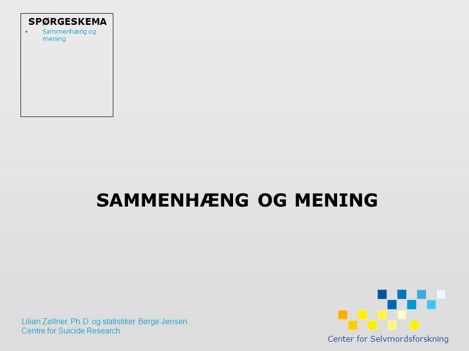 SAMMENHÆNG OG MENING Center for Selvmordsforskning SPØRGESKEMA