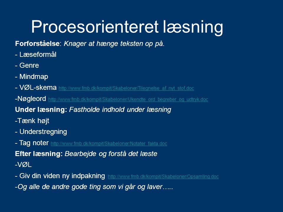 Procesorienteret læsning