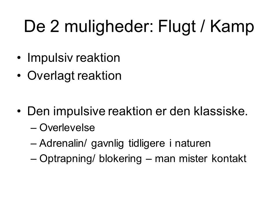 De 2 muligheder: Flugt / Kamp