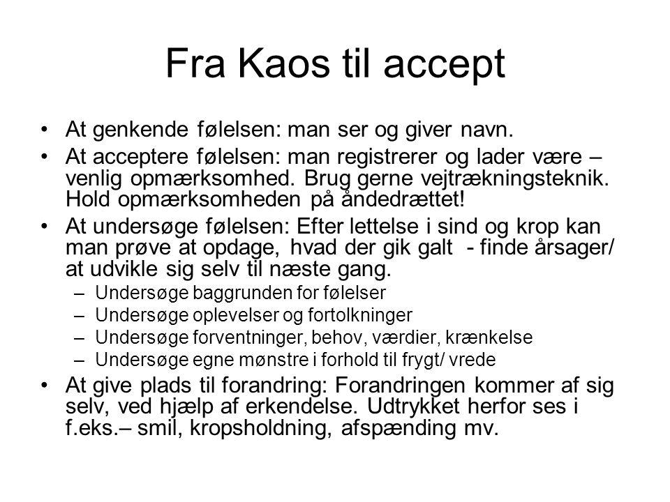 Fra Kaos til accept At genkende følelsen: man ser og giver navn.