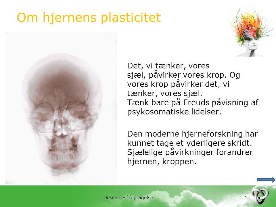 Om hjernens plasticitet
