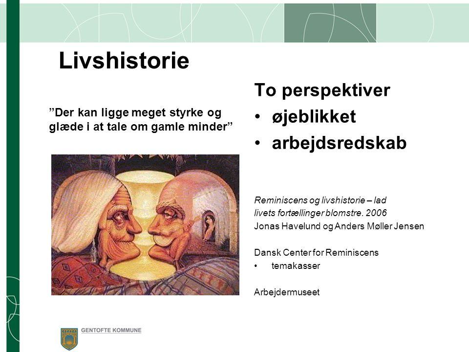 Livshistorie To perspektiver øjeblikket arbejdsredskab