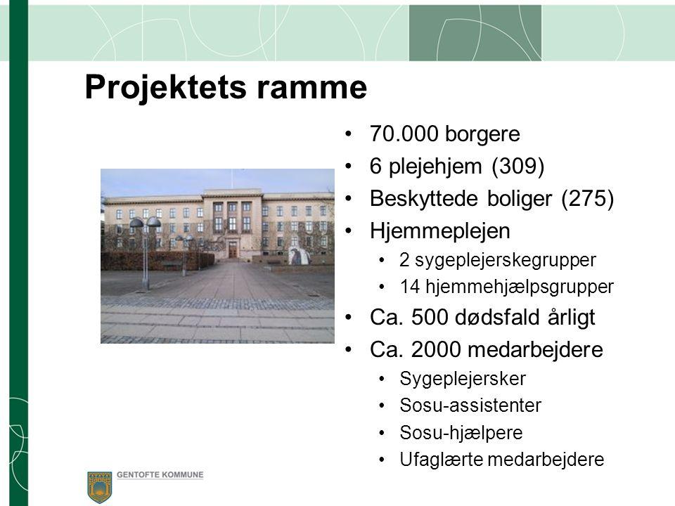 Projektets ramme 70.000 borgere 6 plejehjem (309)