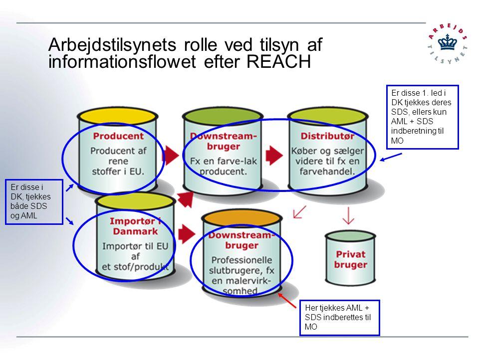 Arbejdstilsynets rolle ved tilsyn af informationsflowet efter REACH