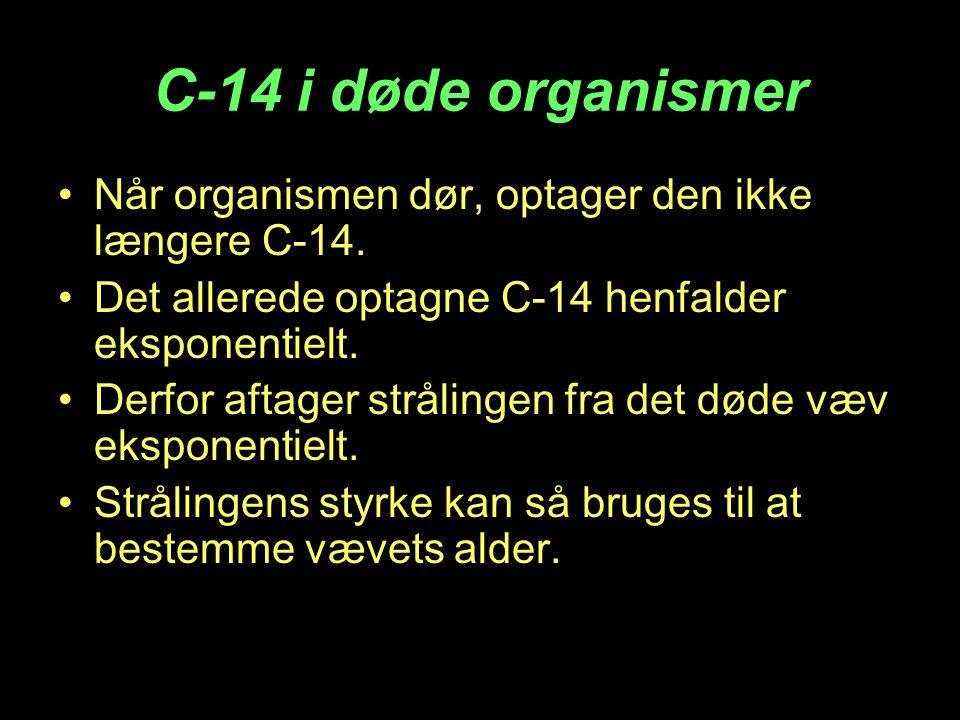 C-14 i døde organismer Når organismen dør, optager den ikke længere C-14. Det allerede optagne C-14 henfalder eksponentielt.