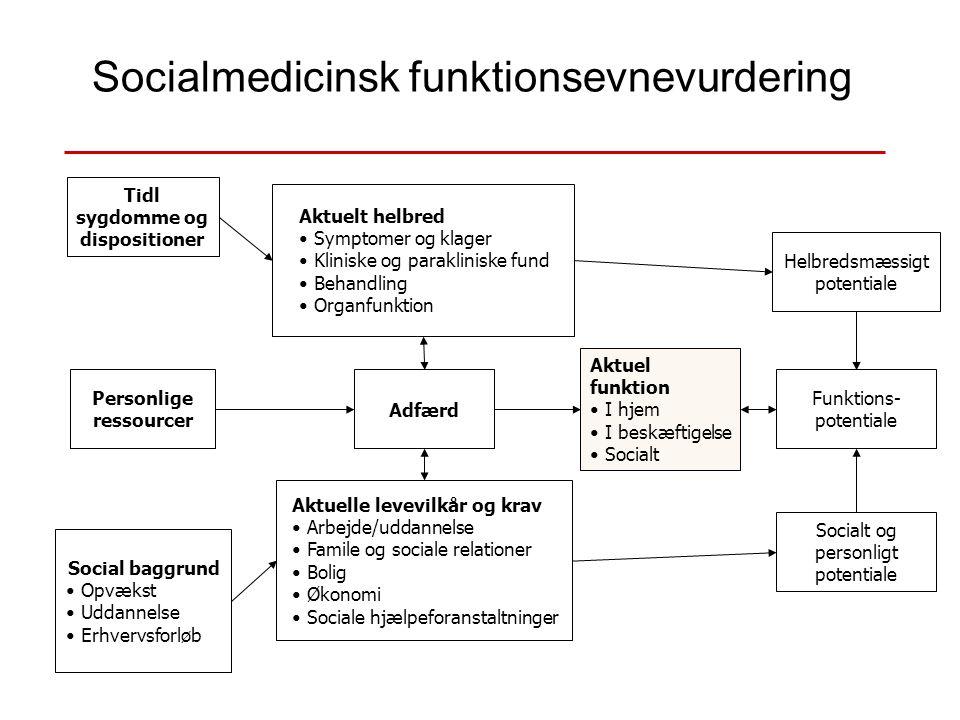 Socialmedicinsk funktionsevnevurdering