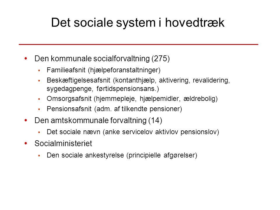 Det sociale system i hovedtræk