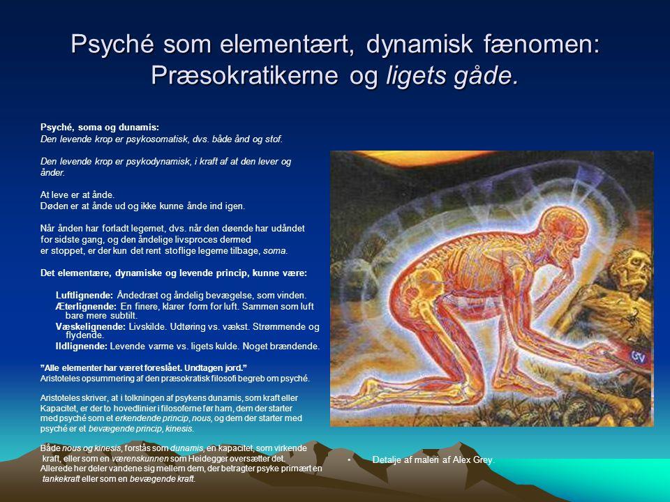 Psyché som elementært, dynamisk fænomen: Præsokratikerne og ligets gåde.