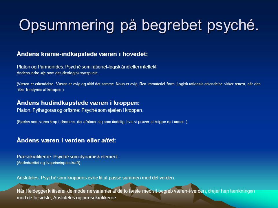 Opsummering på begrebet psyché.
