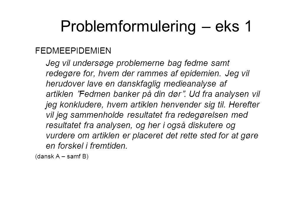 Problemformulering – eks 1