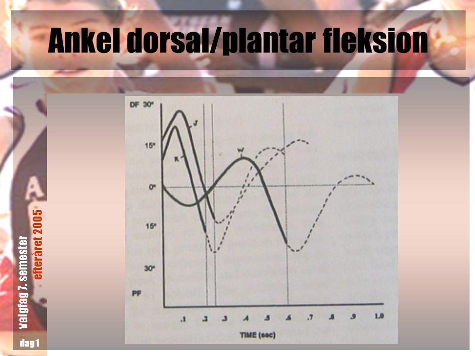 Ankel dorsal/plantar fleksion