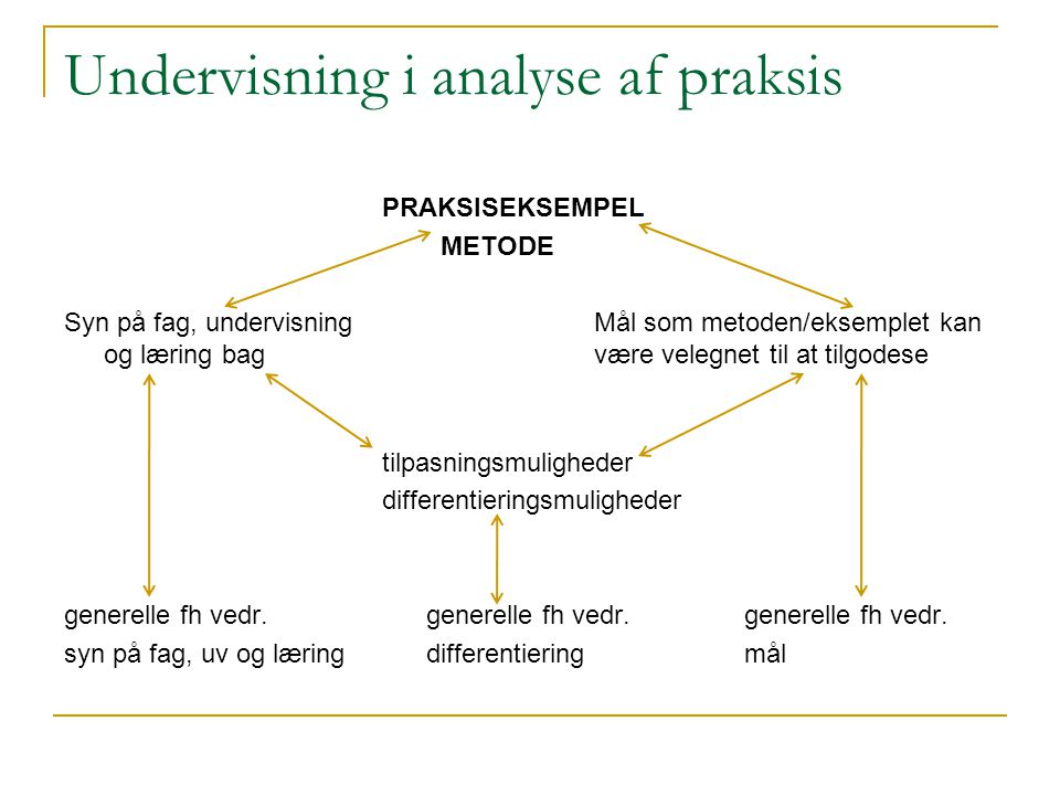 Undervisning i analyse af praksis
