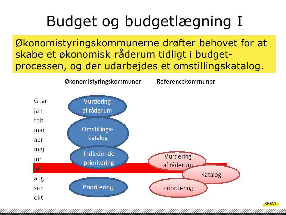 Budget og budgetlægning I